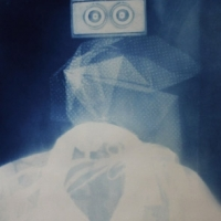 Cyanotype plastic holga head
