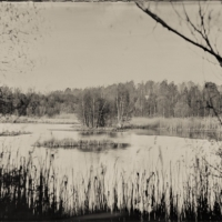 Wetplate collodion island
