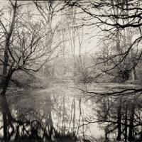 Wetplate collodion silent waters