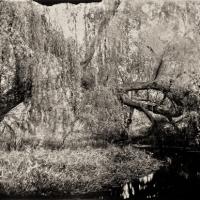 Wetplate collodion the bridge