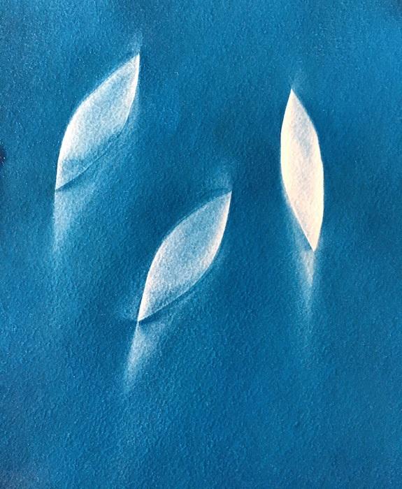 Cyanotype-Almost-there-III