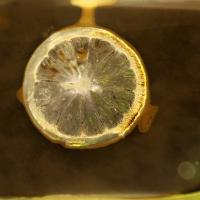 Lumen print lemon slice on Ektachrome