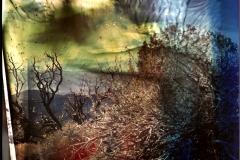 Film acceleration Inyo White Mountain vista pinhole
