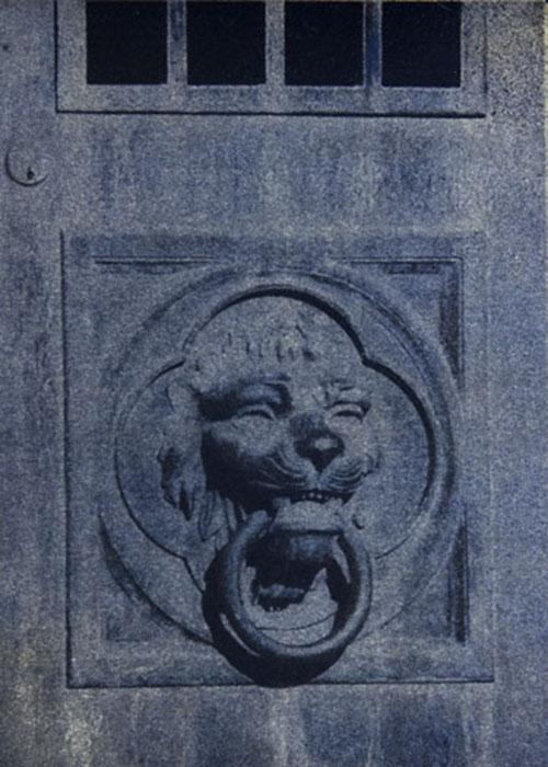 Gumoil Lion