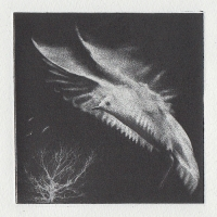 Photopolymer Gravure Fly Away