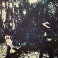 Gum bichromate Mangrove Mountain Ladies
