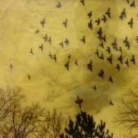 Encaustic print Birds Over Santa Fe