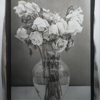 Roses - Platinum and Palladium Print