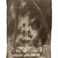 Vandyke brown Cross