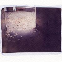 Polaroid emulsion lift Passageway London