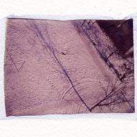 Polaroid emulsion lift Snow Onesti Romania