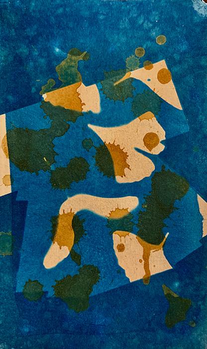 Cyanotype-Kimono-2