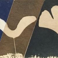 Cyanotype-Maple-Gingko