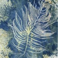 Cyanotype-Seaweed
