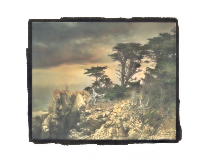 Pt-Pd-over-Pigment-Point-Lobos-3