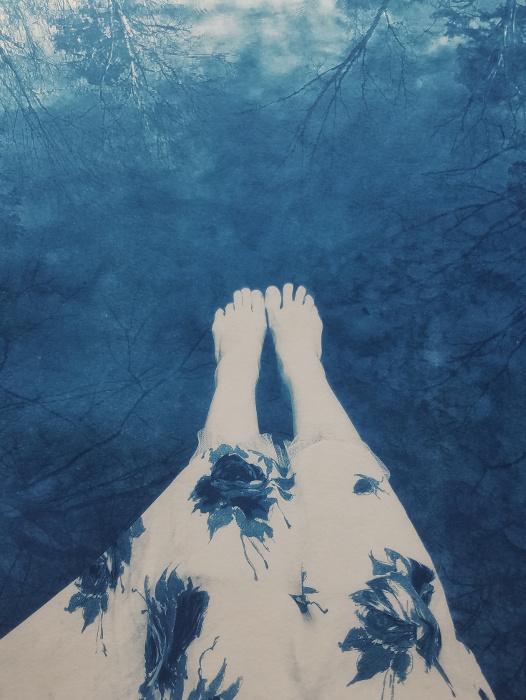 Cyanotype Reedy Creek