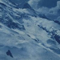 Cyanotype Mount Titlis and bird