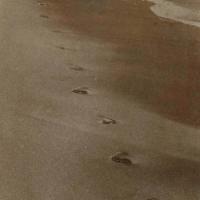 Saltprint Beach footprints