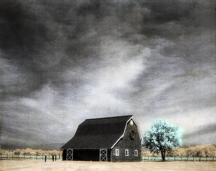 Handpainted-Vneyard-Barn-and-Tree