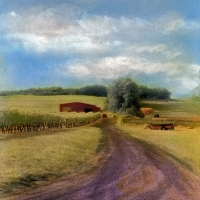 Handpainted infrared Vineyard Road