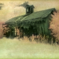 Handpainted-Abandoned-Barn-and-Trees