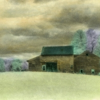 Handpainted-Barns-in-Springtime
