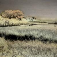 Handpainted-The-Creek