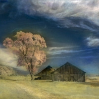 Handpainted-Two-Barns-and-Tree