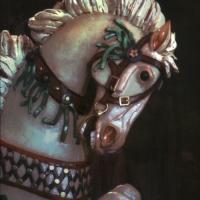 Gum bichromate Missoula Horse