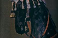 Gum bichromate NZ Horse 2