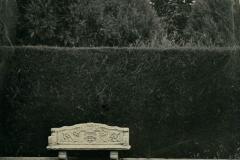 Wetplate collodion Garden Seat