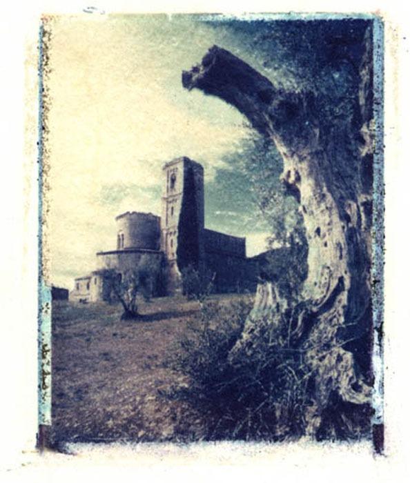 Polaroid-image-transfer-Jan-Harris-Sant