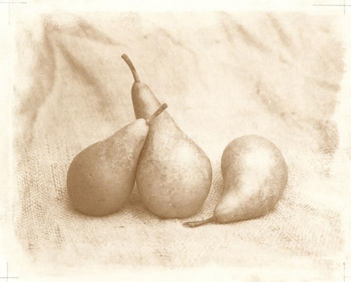 John-Brewer-Pears
