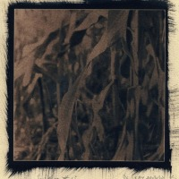Jean-Daubas-Untitled-3