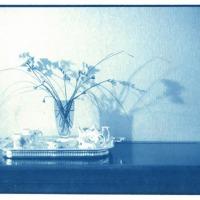 John-Brewer-Flowers