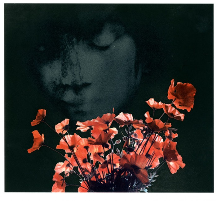Alex-Chater-Rememberance-Temperaprint