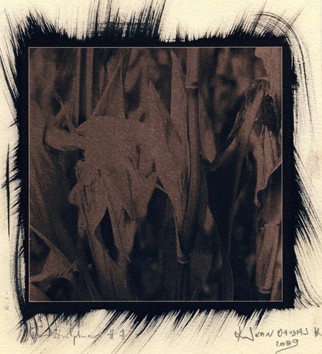 Jean-Daubas-Untitled-1