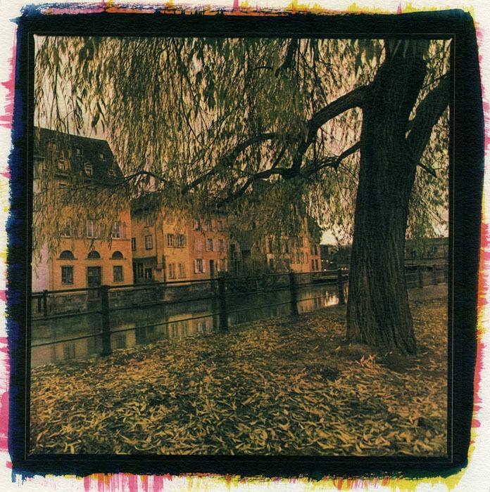 Juan-Miguel-Autumn-in-Strasbourg-Gum-over-Cyanotype
