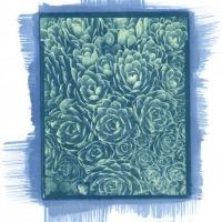 Gum-over-cyanotype-John-Brewer-Hens