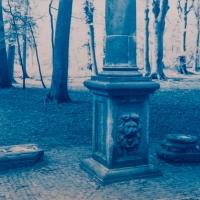 Cyanotype-pilar