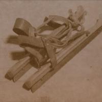 Saltprint-skates