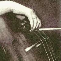 Bromoil Cello