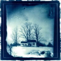 Cyanotype Three Trees