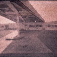 Albumen 6x9