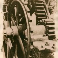cyanotype 28