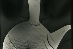 Photogram Porron