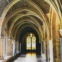 Gum bichromate Cathedral Burgos