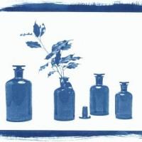 Cyanotype-Greenish-Brown