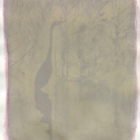 anthotype imsge of as crane done with cranberry emulsion on recycled paper