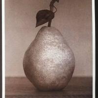 Albumen-Pear